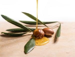 PHS HAIRSCIENCE®️ Why is argan oil good for hair